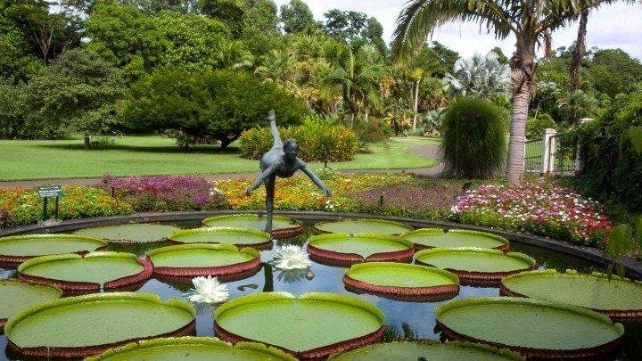 Plantarum - Botanic Garden in São Paulo
